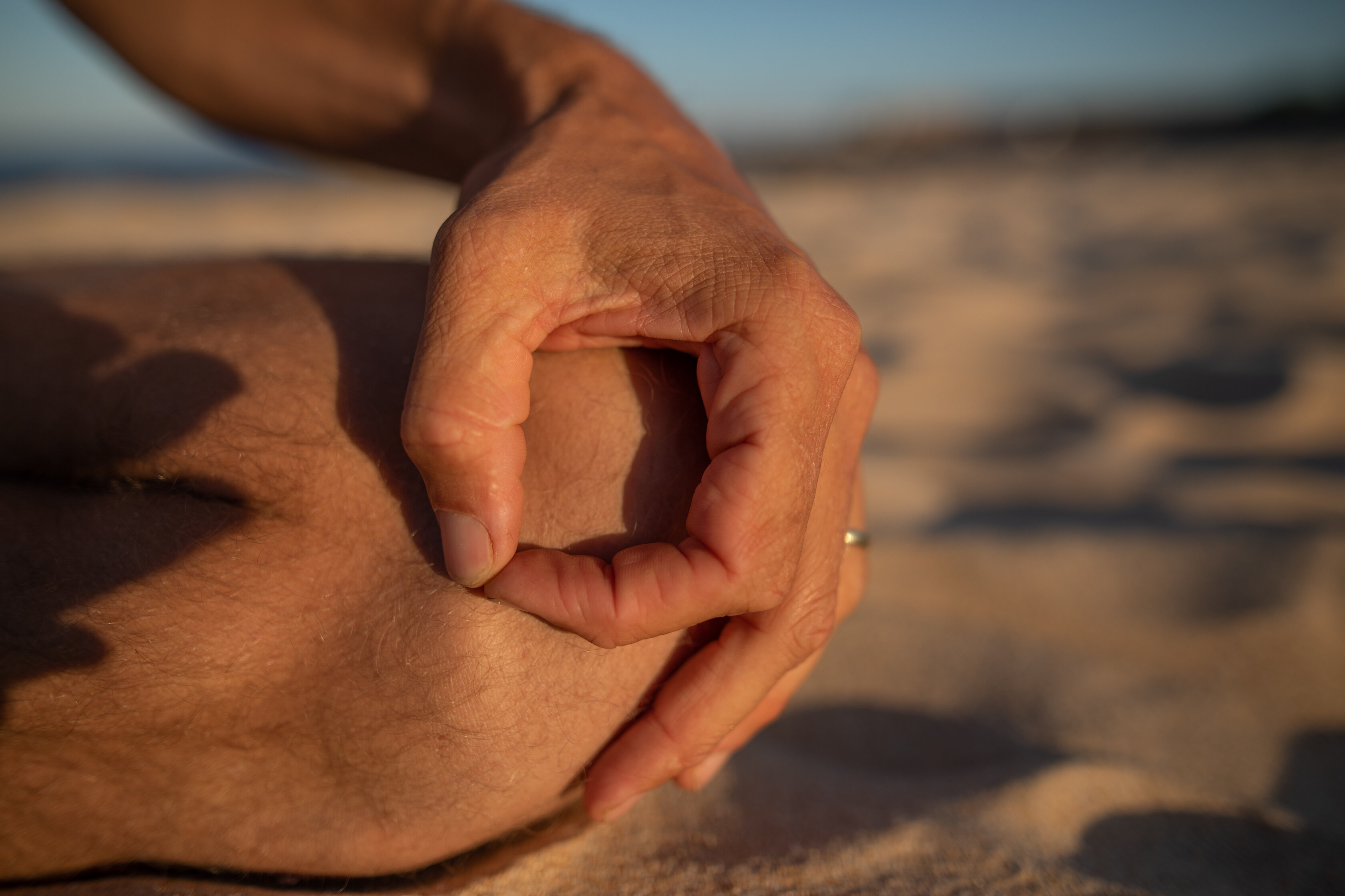 michael meditation mind training mindfulness mudra